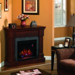 Twin Star Frankin Fireplace